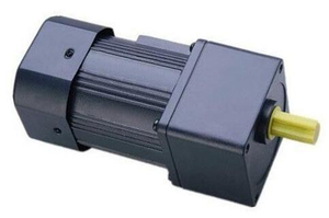 AC parallel gear motor